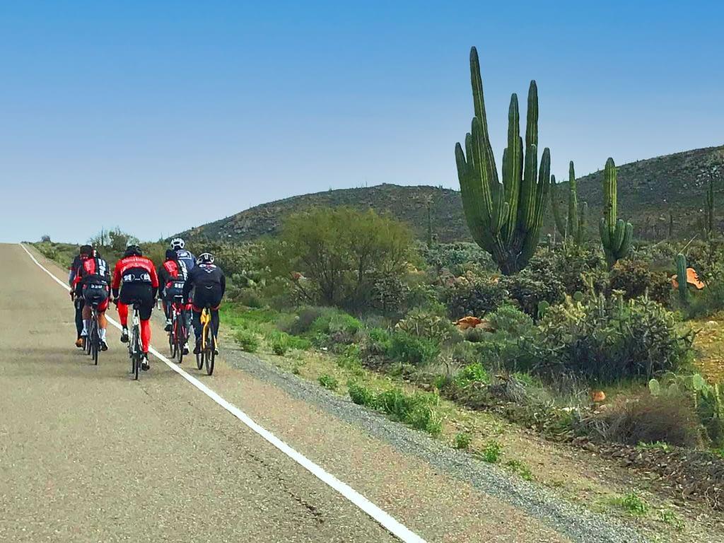 Cycling tour group in the Valley de los Cirios in Baja, California